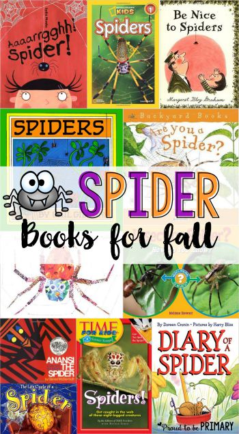 Spider books for fall