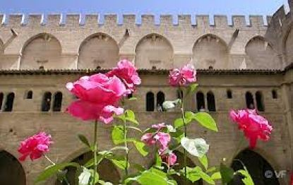 Festival of Roses Avignon 30 May to 01 June
