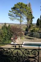 Garden view from upstairs