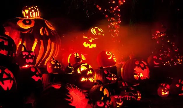 Fall Scenes Wallpaper With Pumpkins Jack O Lantern Spectacular From A To Z Providence Daily Dose