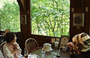 シュトラウス・カフェから「オオデマリ」を眺める