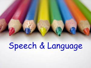 PS 321 Presentation on Speech and Language, 6/3