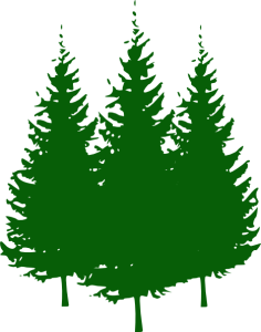 Need A Christmas Tree? Support 321 When You Buy It!