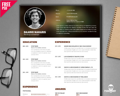 20 Best Resume Templates Free PSD PsdDaddy