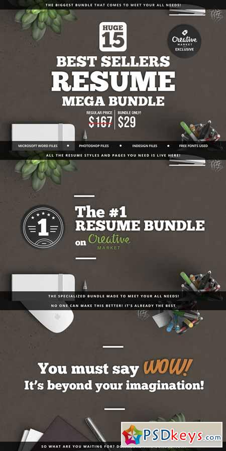 best cv templates torrent