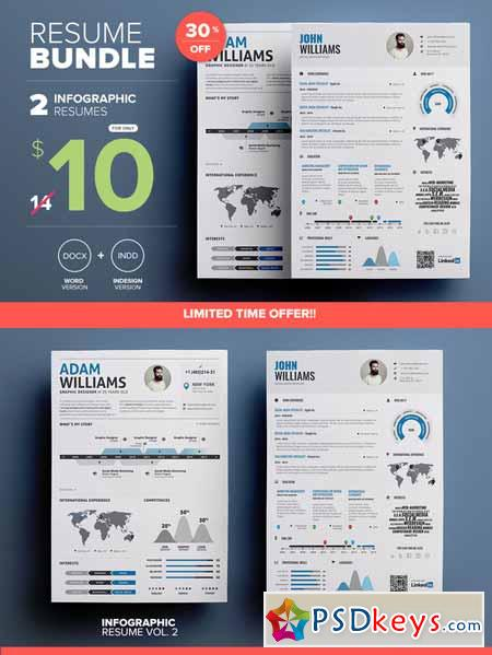 Infographic Resume - Mini Bundle 306554 » Free Download Photoshop - infographic resumes