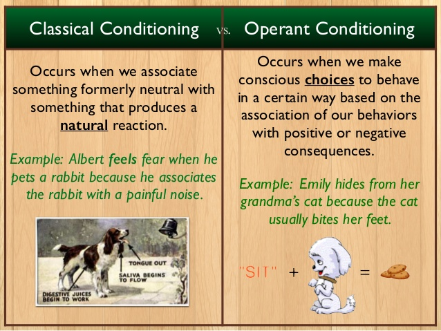 Chapter #6 - Norristown Area High SchoolIntro to Psychology Course - examples of classical conditioning