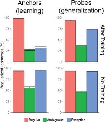 Generalization from newly learned words reveals structural