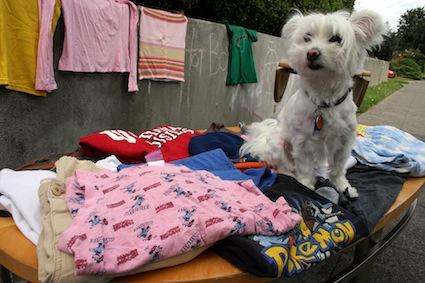 dog-yard-sale