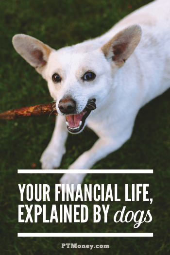 Check out what our four-legged friends have to say about personal finance. They may have a few tips for you that you need to read! They are, after all, man's best friend.