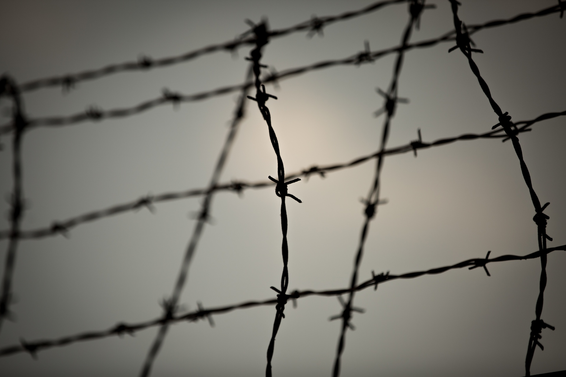 77 Online Barbed Wire Free Stock Photo - Public Domain Pictures