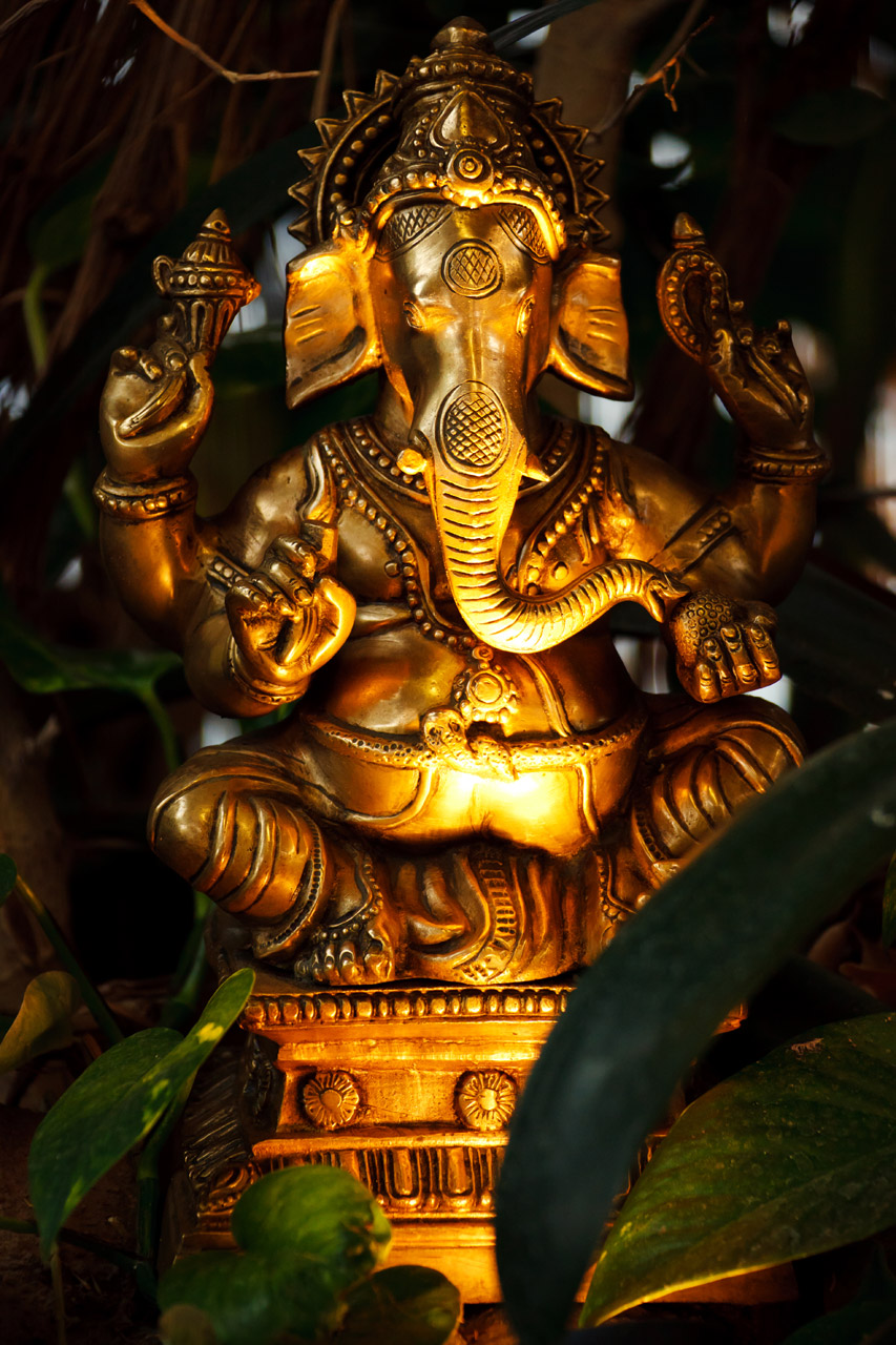 Iphone Hd 3d Wallpapers Ganesha Free Stock Photo Public Domain Pictures