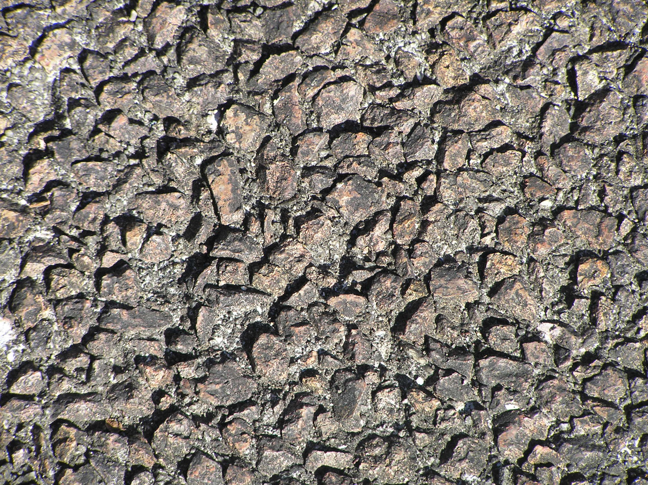 Some 3d Wallpapers Rocky Texture Free Stock Photo Public Domain Pictures