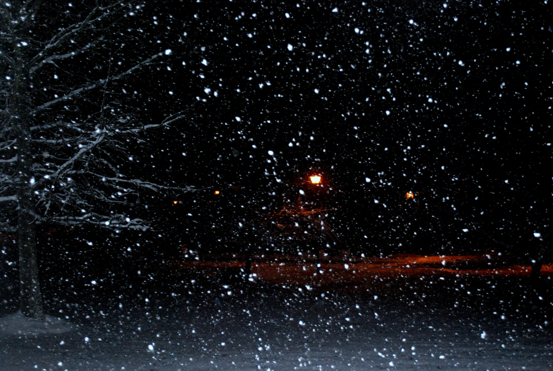Snow Falling Wallpaper Download Night Snow Free Stock Photo Public Domain Pictures