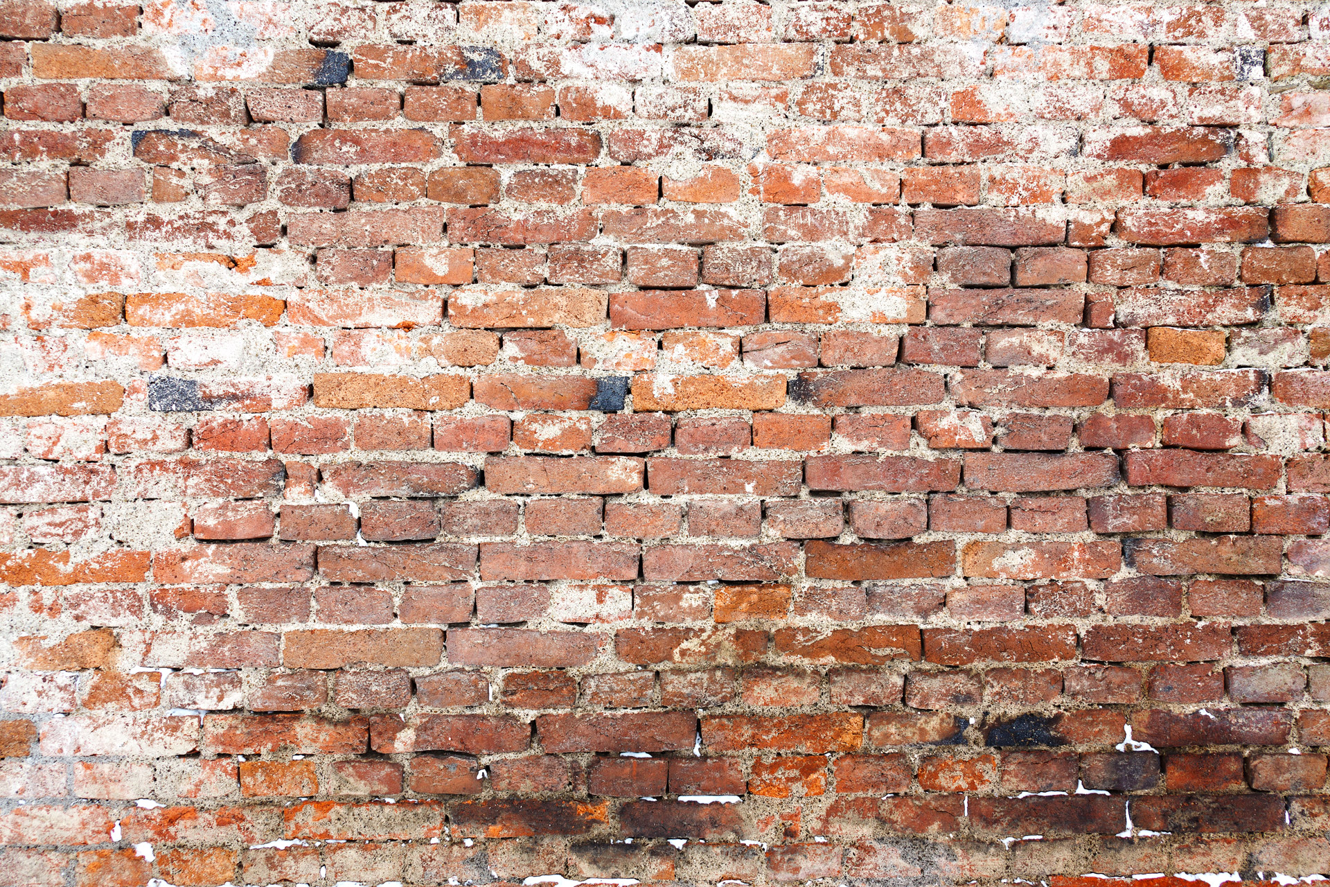 How To Add Brick To A Wall Old Brick Wall Free Stock Photo Public Domain Pictures