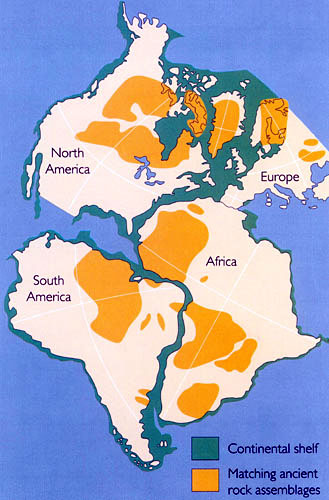 Evidence Alfred Wegener Building a Case for Continental Drift