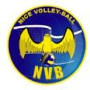 Nice_volley_ball