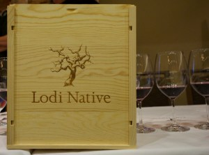 Lodi Native Six Pack