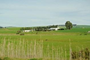 The Swartland farms