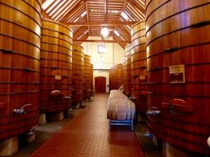 Beautiful barrels at Jordan Vineyard & Winery