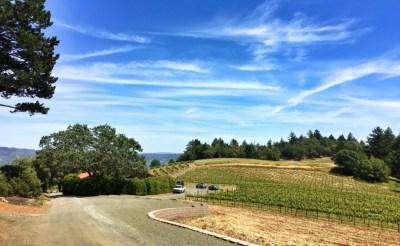 WineryandVineyards