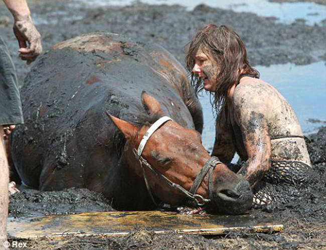 At over 1,000 lbs, attempts to free the horse before help arrived only resulted in both becoming more stuck.