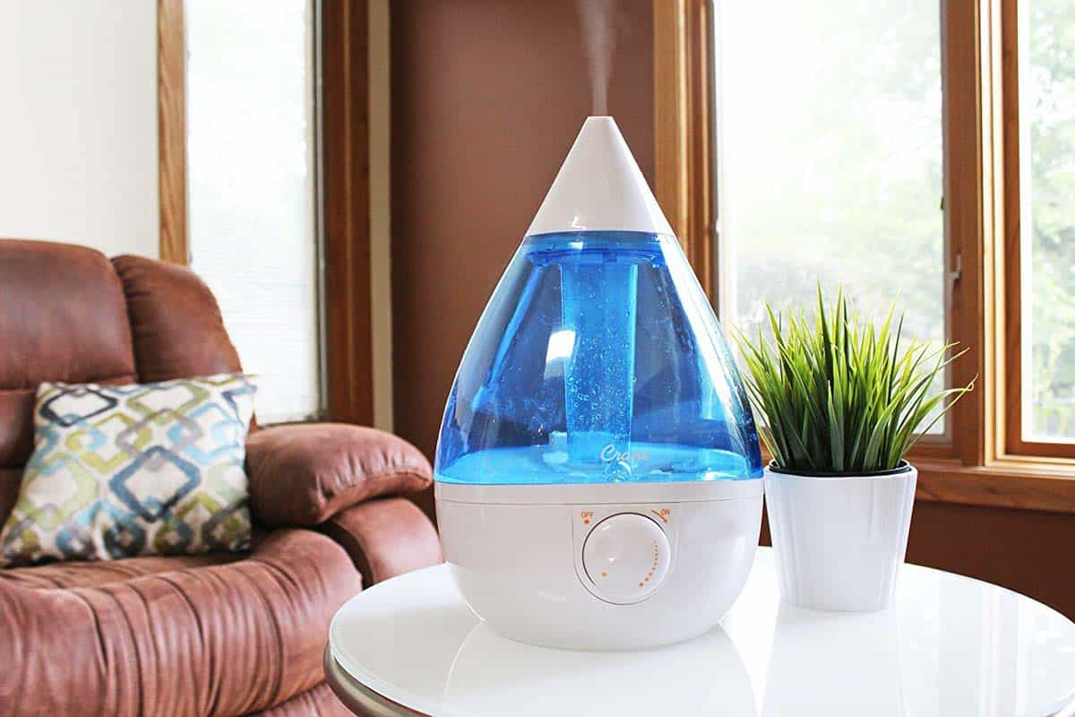 Humidifier Vs Diffuser Which One Is Right For You