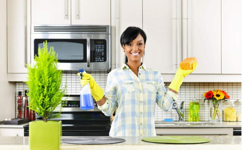 Hogaru, dos clics para encontrar profesionales de la limpieza por días