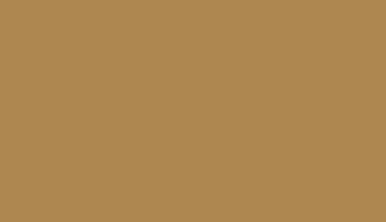 Beige Ral Ral 1011 Brown Beige Polyester Smooth And Glossy Metallic