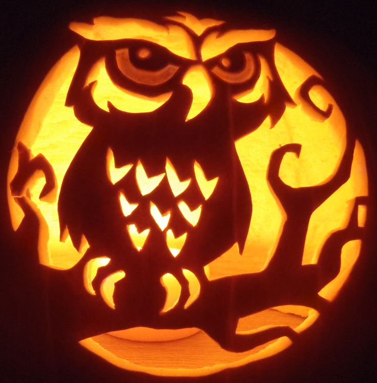 Free owl pumpkin carving stencils patterns 2018 Pumpkin carving ideas