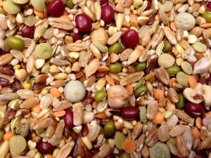 Jen's Organic Sprouting Parakeet Food