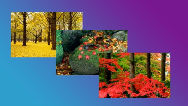 Autumn image theme