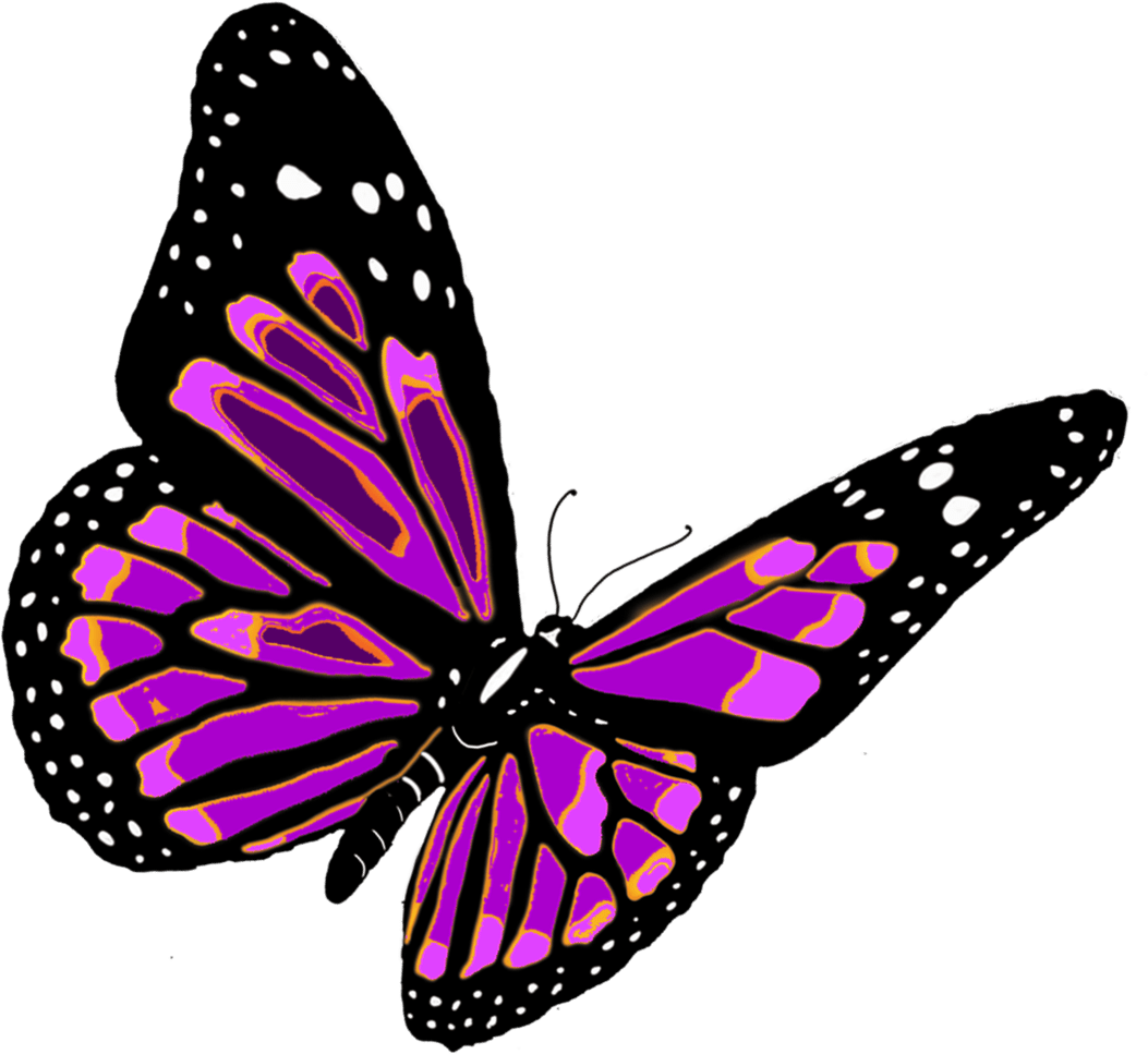 Flying Butterfly Animated Butterfly Png Image Purepng Free Transparent Cc0 Png