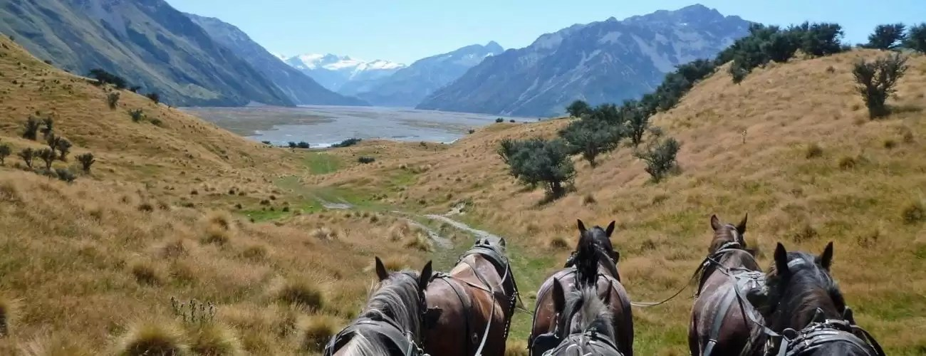 Buggy Tour Queenstown Canterbury Backcountry Cycle Trail Tour With Vehicle Support