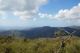 puriy-reiseblog-trinidad-18