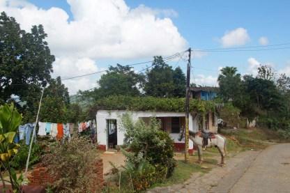 puriy-reiseblog-trinidad-22