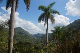 puriy-reiseblog-trinidad-23
