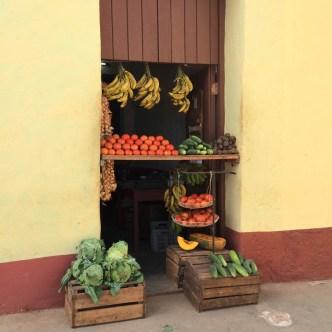 puriy-reiseblog-trinidad-47