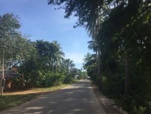 Panglao