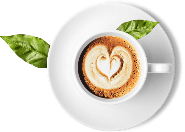 Puro Coffee Brands