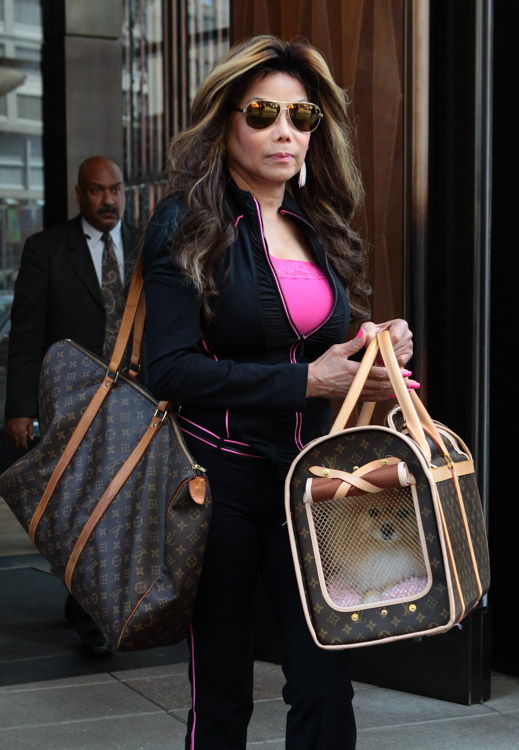 Dog Carrier Bag Latoya Jackson Totes Her Furry Friend In Louis Vuitton