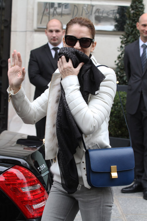 Summer Album Celine Dion's Celine Bag Was Apparently Not A Fluke