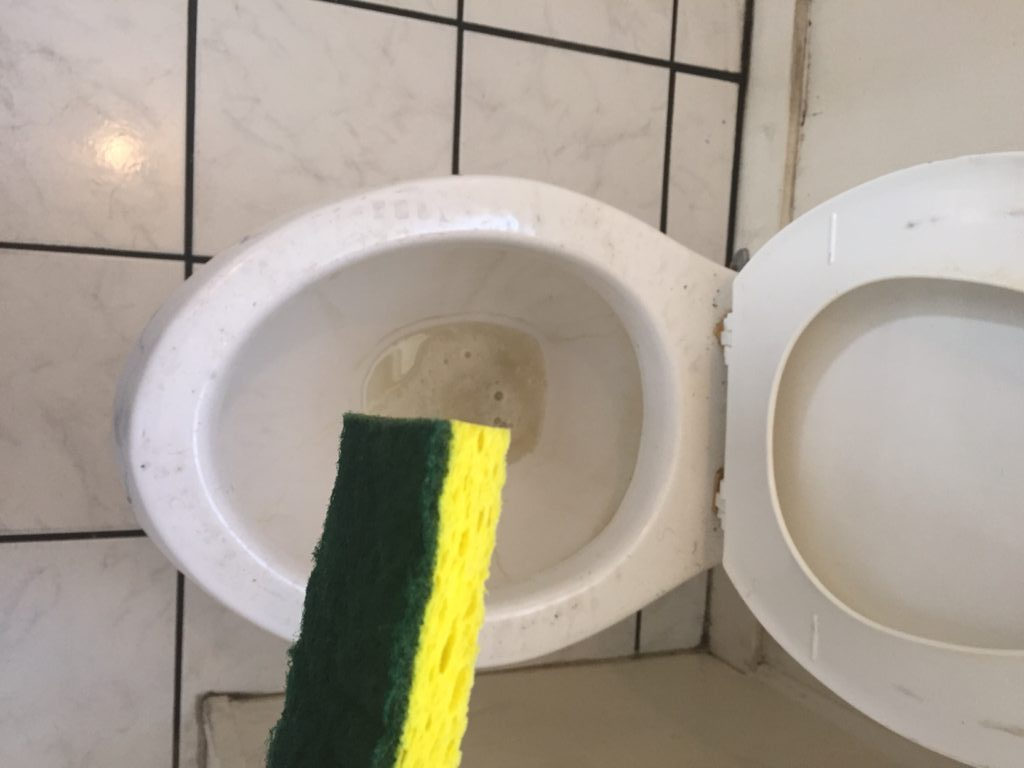 Bleach In Toilet Tank How To Resurrect A Neglected Toilet - A How-to Guide