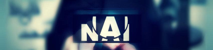 Surveillance Investigations New York NAI - surveillance investigator