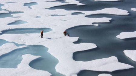 Arktiki