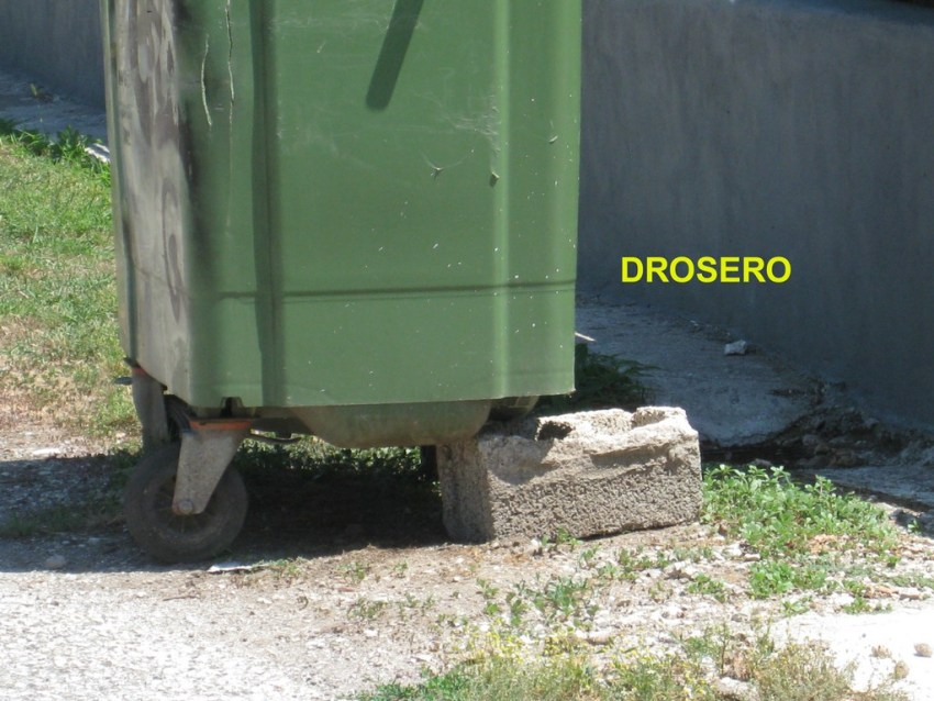 DROSERO (1) copy