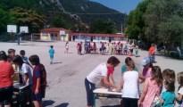 Dim Pylis (2)