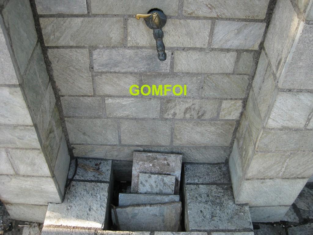 gOMFOI (9) copy