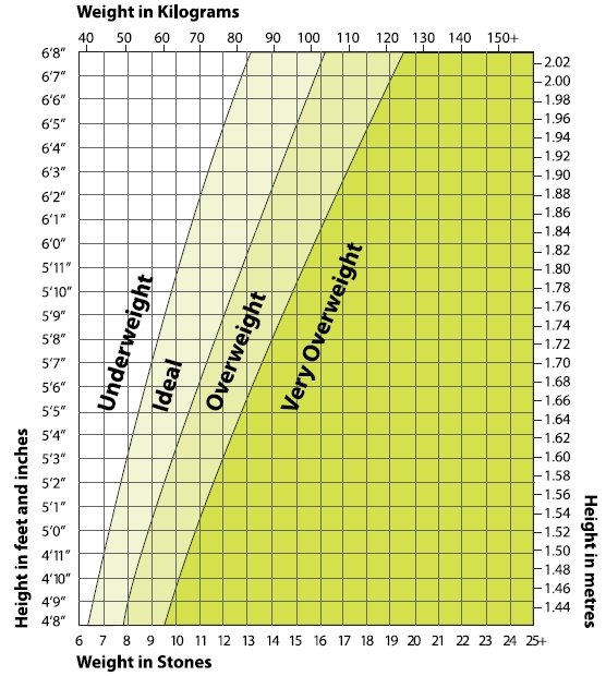Ideal Weight Chart - Personalise Your Programme NZ - AU