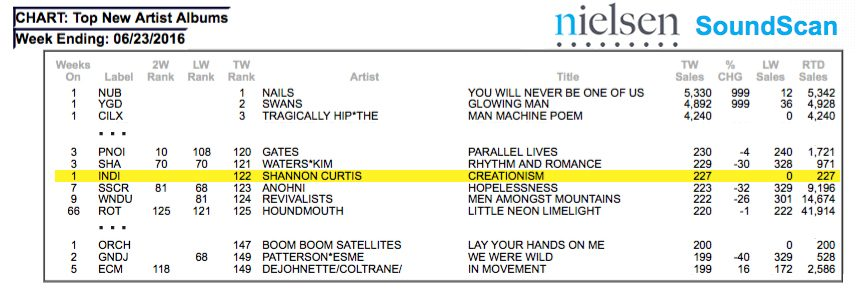 Here\u0027s how we got the new Shannon Curtis record on the charts - DIY